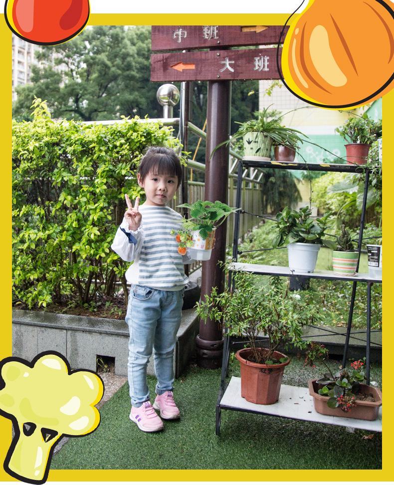 详情新乐 (3).jpg